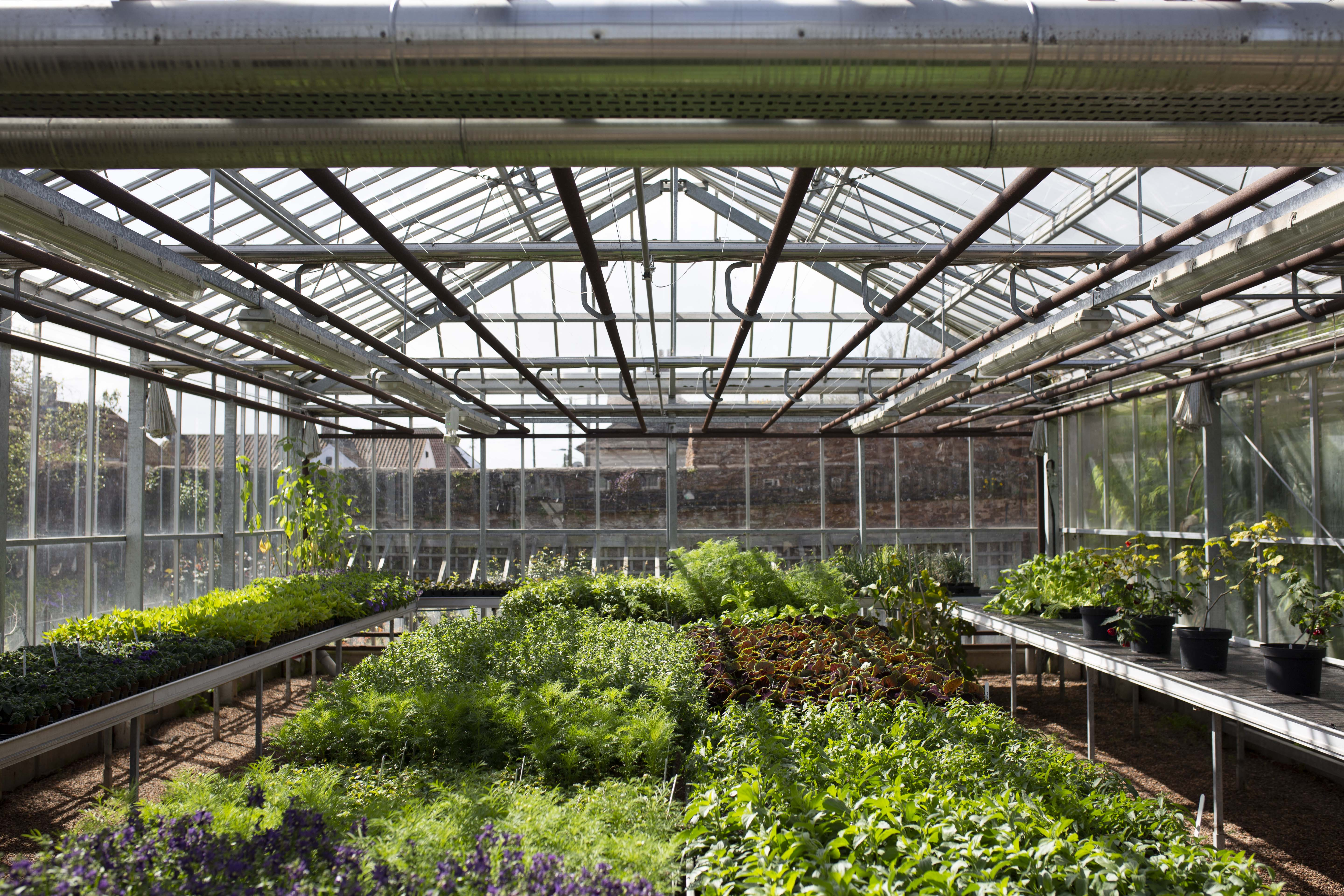 RHS Principles of Horticulture Certificate Level 2 ...