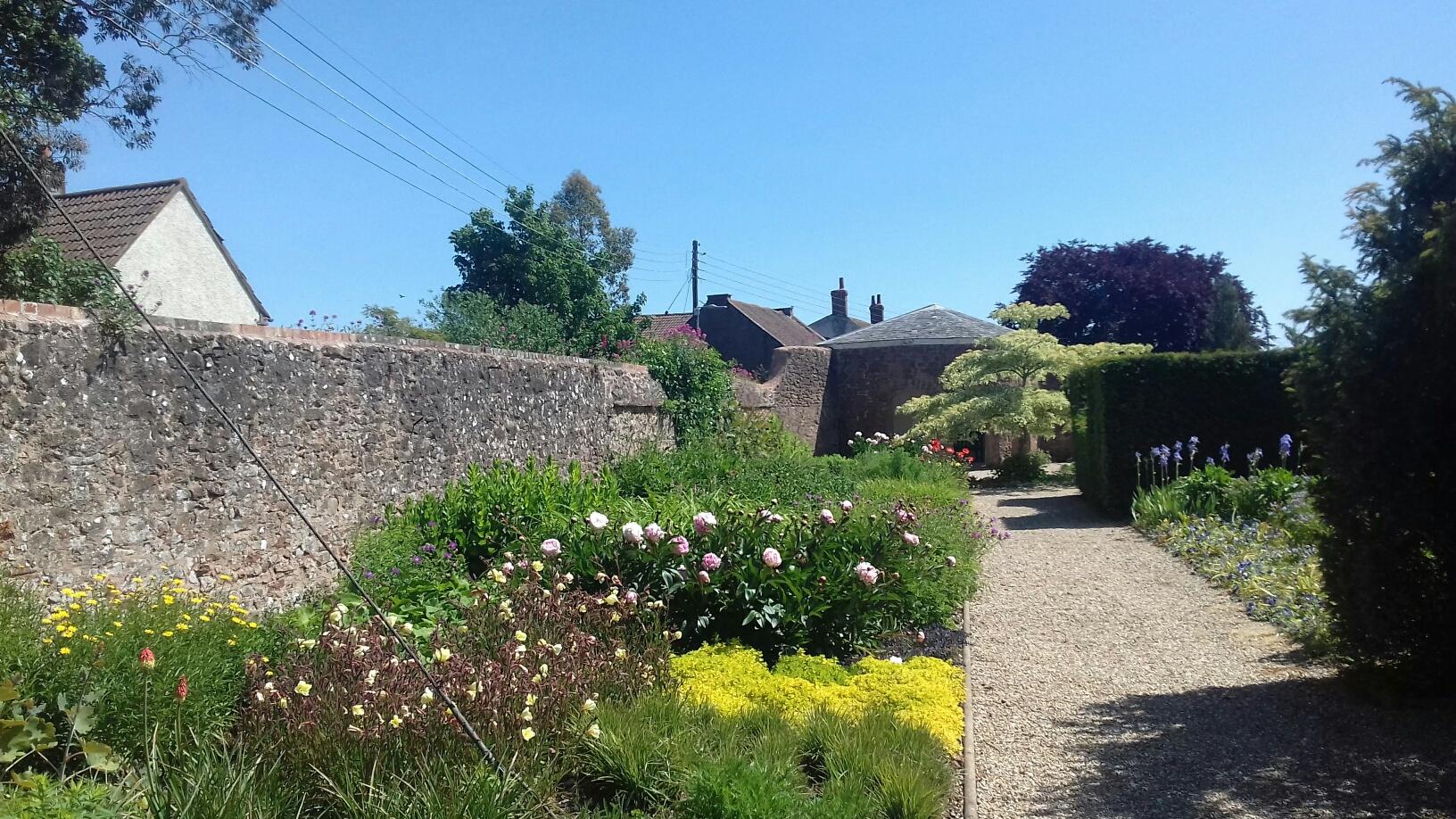 Garden Design Principles for Beginners (online ...